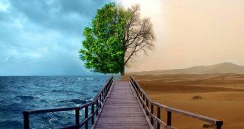 Como conquistar a transformação pessoal?